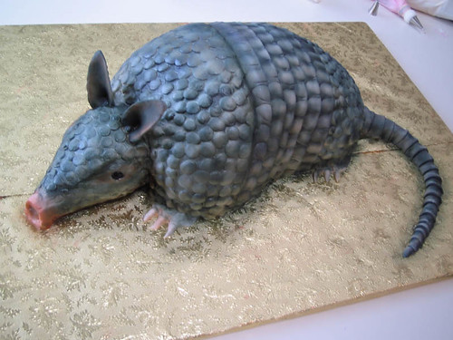 Armadillo Cake Movie