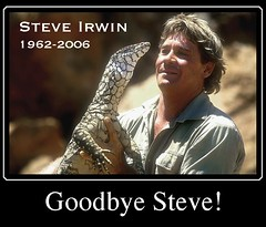 I will miss him! (Crocodile Hunter Died today) | by steve_steady64