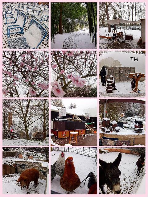 Herzogenriedpark Mannheim am 18. März 2018_Eis und Schnee_Fotocollage: Tanja M.
