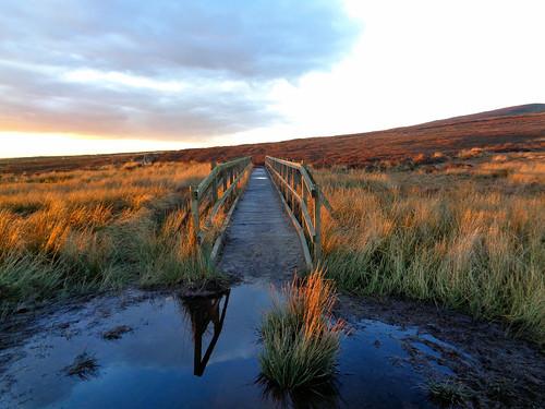 Footbridge on Middle Moor