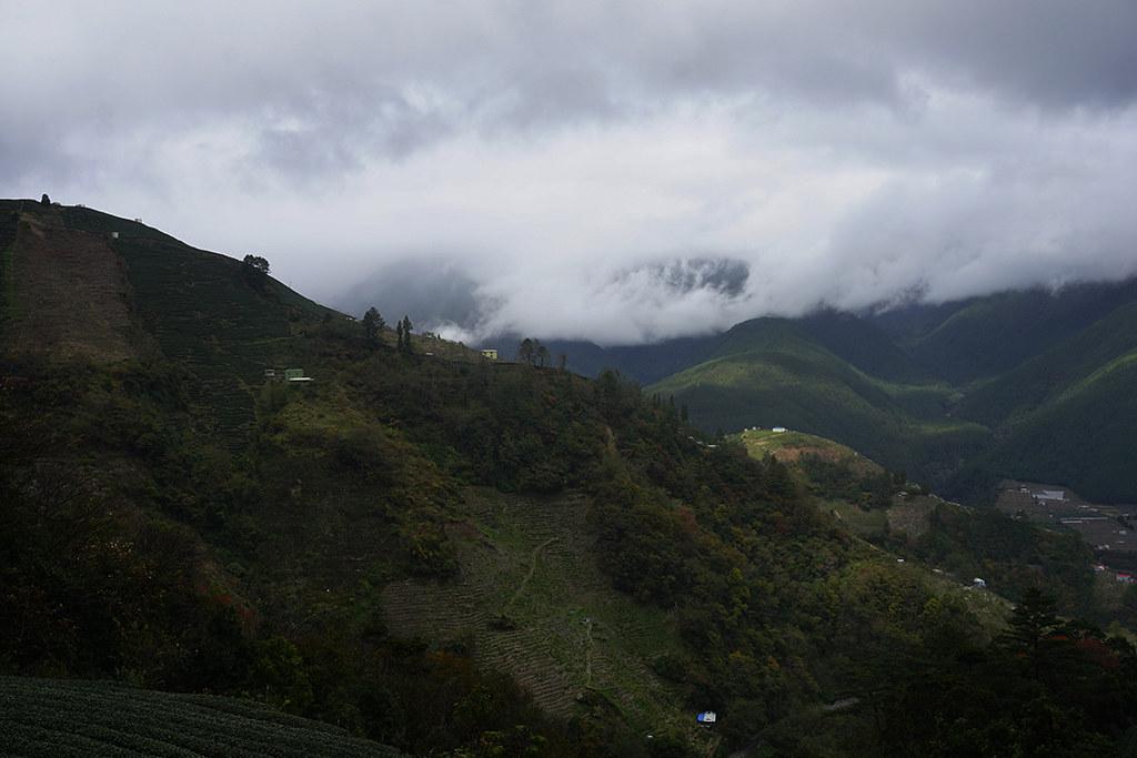 雲霧飄渺 - 新佳陽