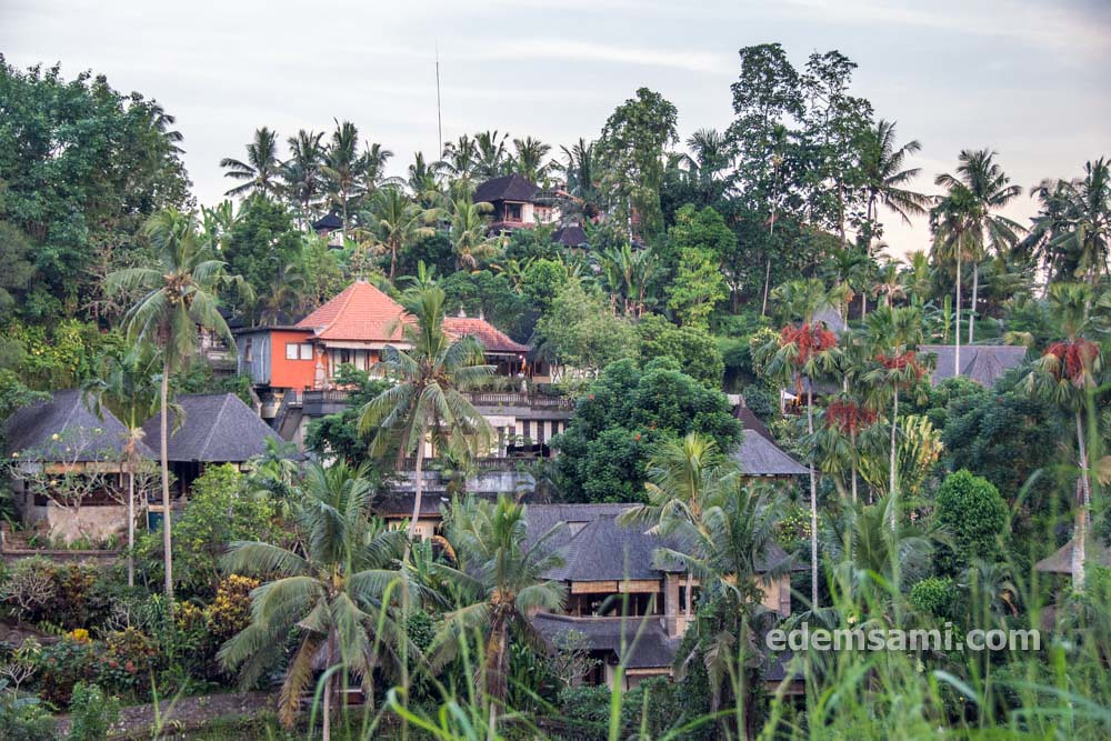 Убуд Индонезия что посмотреть