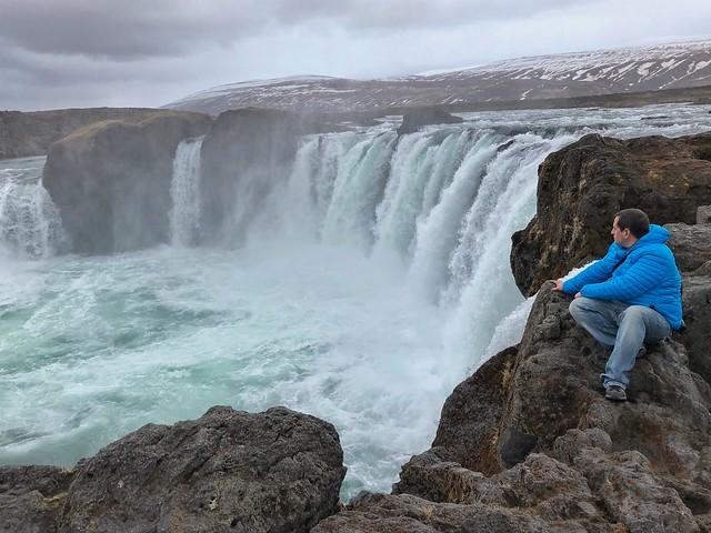 Sele en la cascada Godafoss (Norte de Islandia)