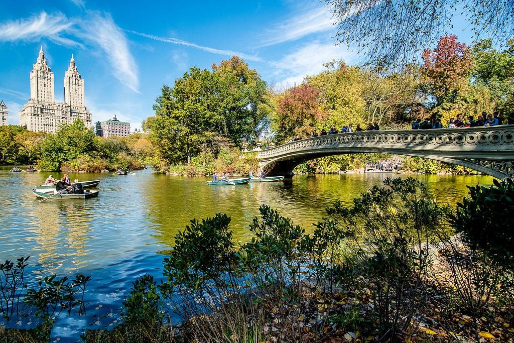 纽约中央公园图片