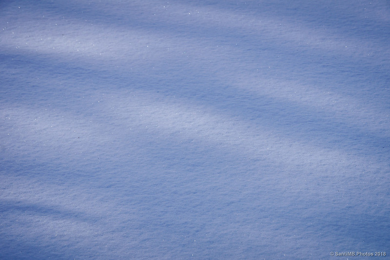 Nieve intacta en el Coll de Salamó