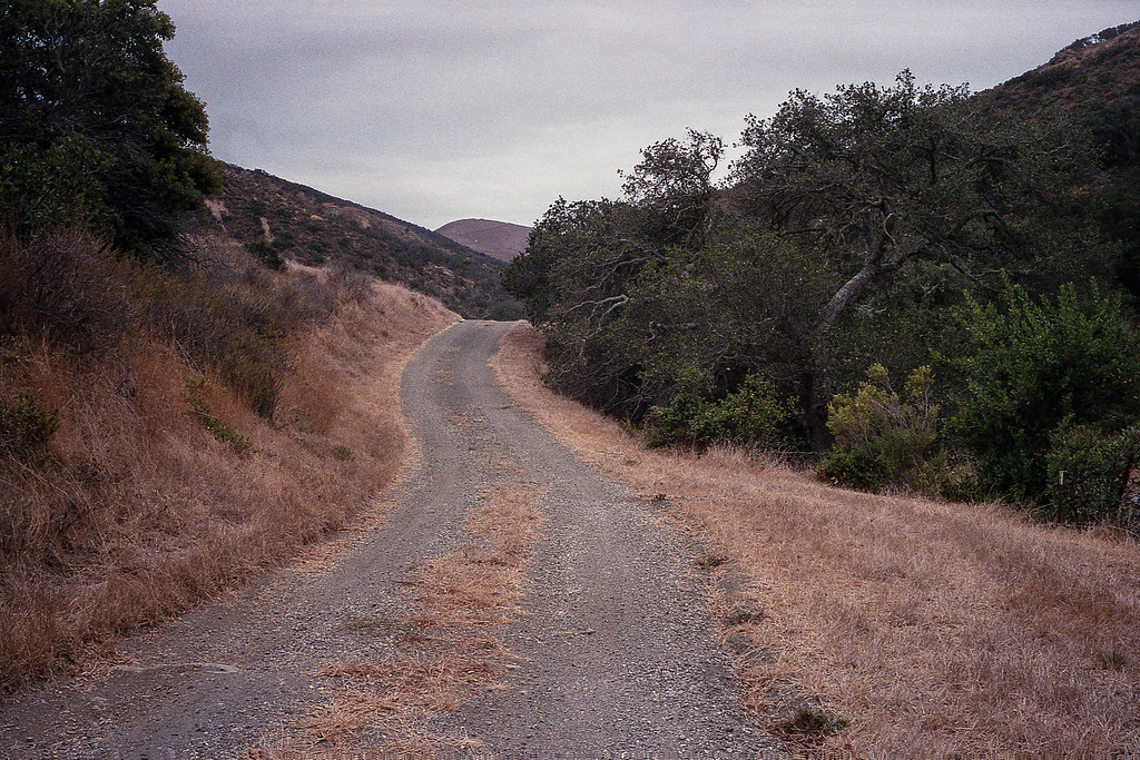 Downhill | by ADMurr