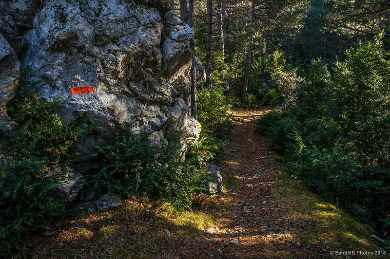 Sendero del Bosc de Palomera