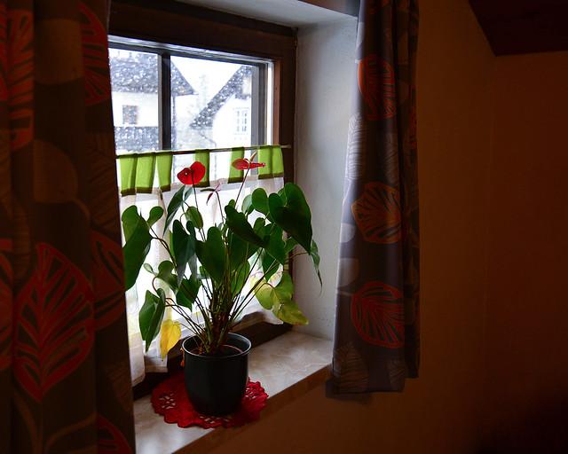 Nuestra ventanita en del apartamento en Hallstatt, con nieve