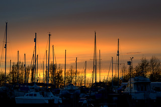 Masts at sunset | by Tony Worrall