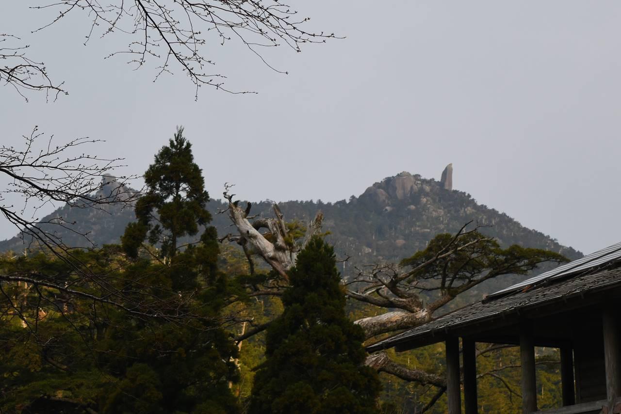 ヤクスギランド駐車場から見上げる太忠岳
