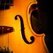 | violin |