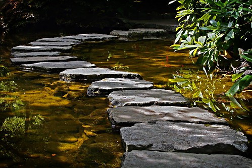 The Stone Path | by WisDoc