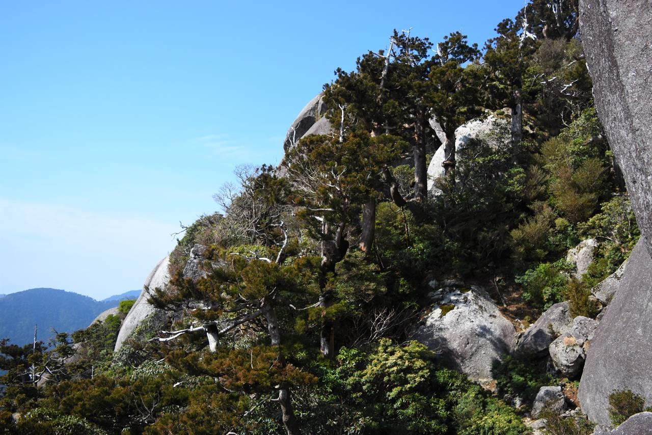 太忠岳展望台の岩場