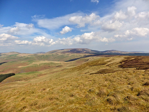 Looking towards the Cheviot