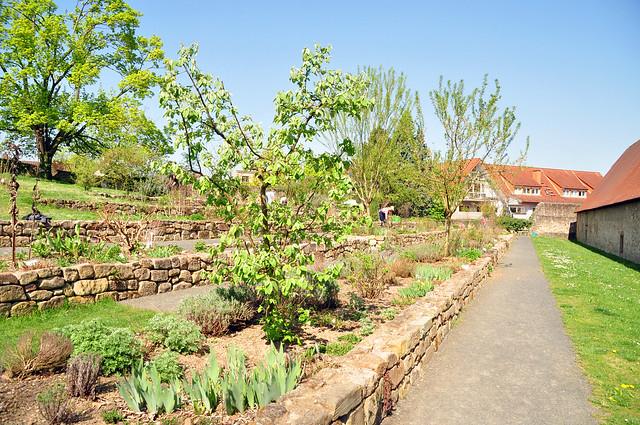 Klostergarten Lorsch neben der karolingischen Torhalle - Foto: Brigitte Stolle