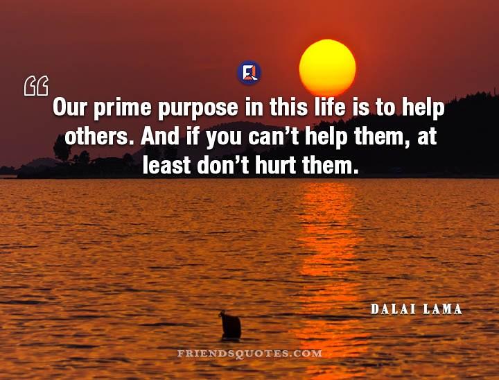 Dalai Lama Quote Our Prime Purpose Life Our Prime Purpose Flickr Mesmerizing Quotes Purpose Of Life