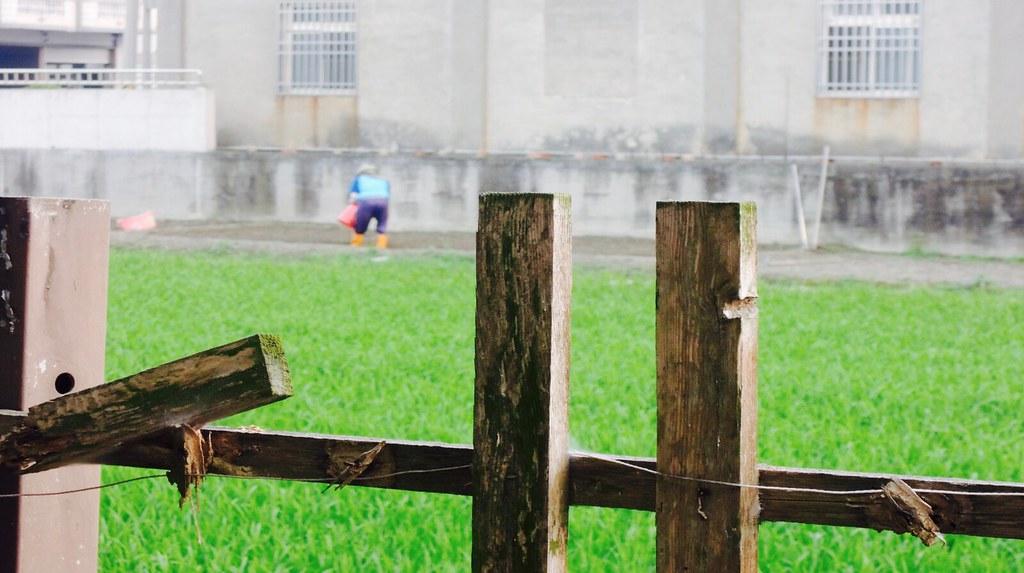 違章工廠何去何從,農地又何時能回到健康安全的生產環境?