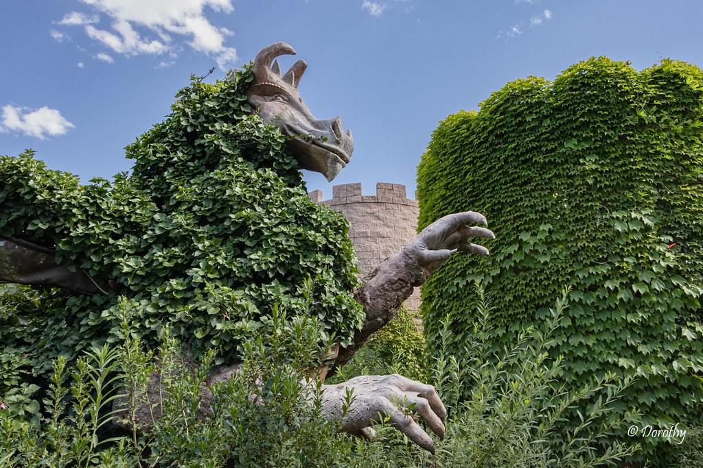 albuquerque biopark botanical garden new mexico by jersey camera - Abq Biopark Botanic Garden
