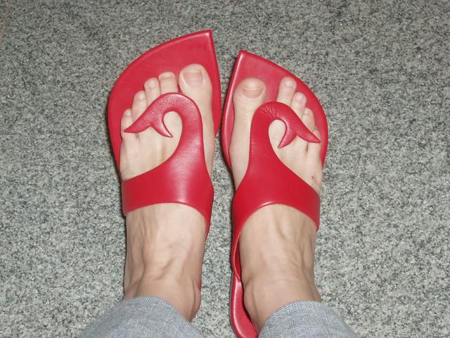 Grasshopper Shoes For Women