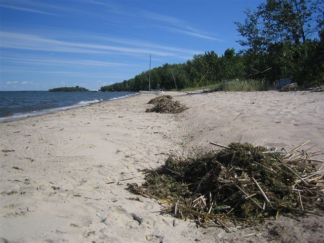 lac la biche online dating Lac la biche county is an area blessed with natural beauty in the form of an abundance of lakes, old growth forests, wildlife and excellent outdoor recreational opportunities.