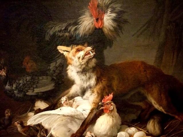 Fox In A Chicken Yard By Jean