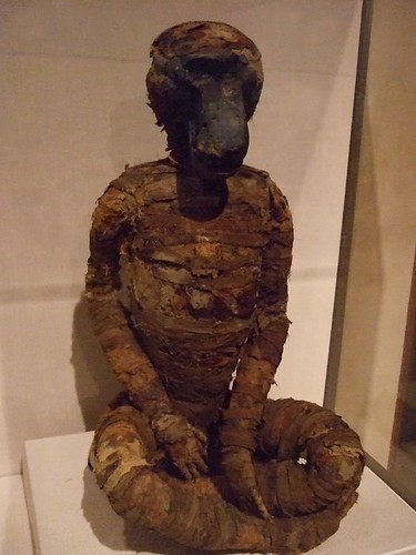 A Baboon Shaped Jar Wrapped As A Mummy Donation For Thoth