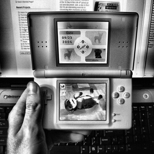nintendogs at night [DILO] | by striatic