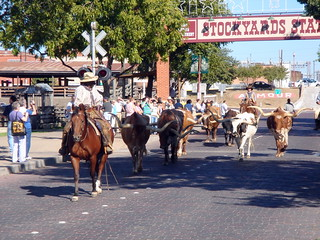 Stockyards | by .ty