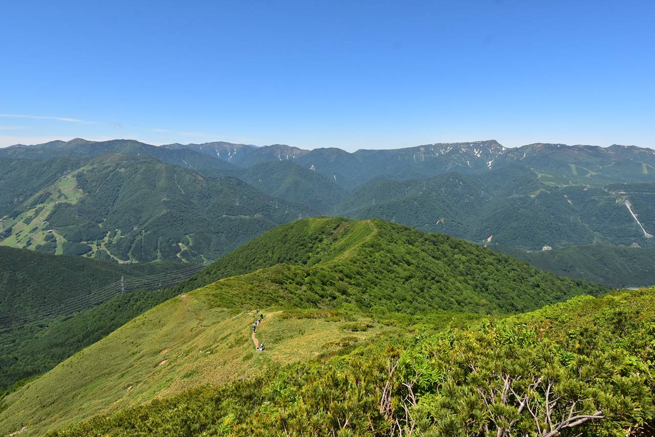 平標山登山道から眺める苗場山