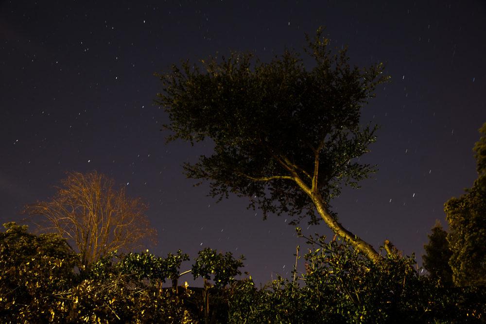 Neighborhood Nights (Slow return) | by neocles