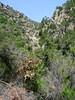 Le bas du canyon de Lora