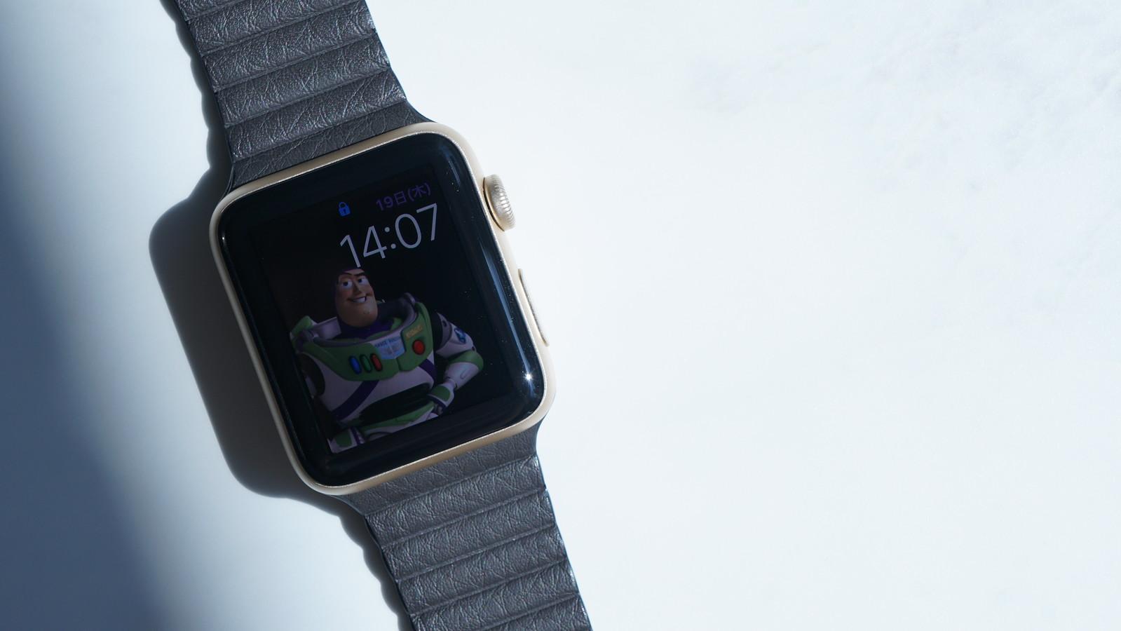 Apple Watch レザーループバンド 42mmケース用