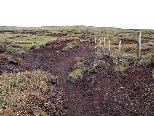 Exposed peat on Birks Fell