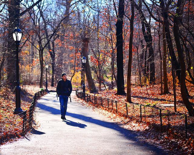 Caminando por Central Park de Nueva York