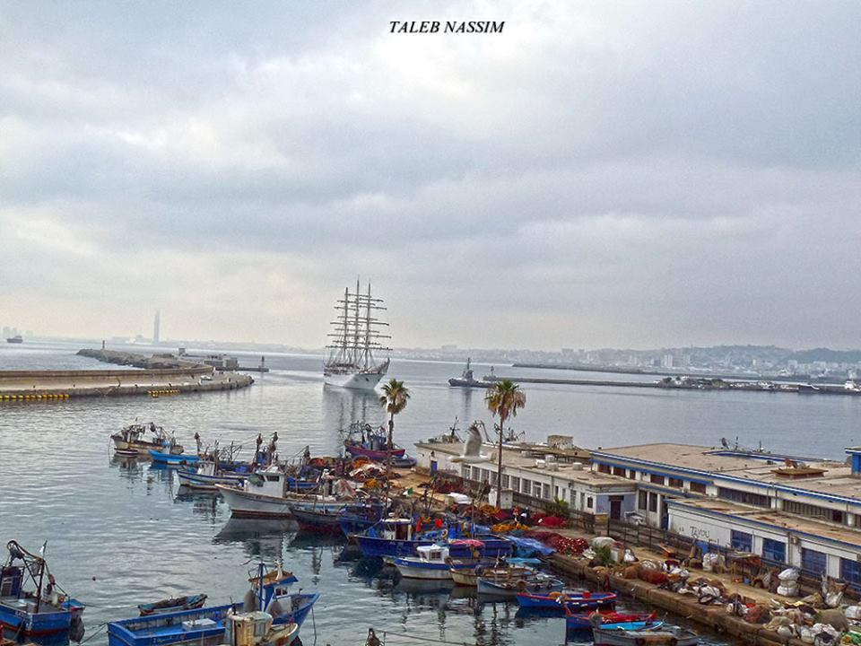 صور السفينة الشراعية الجزائرية  [ الملاح 938 ] - صفحة 11 42461964624_9feecca99c_o