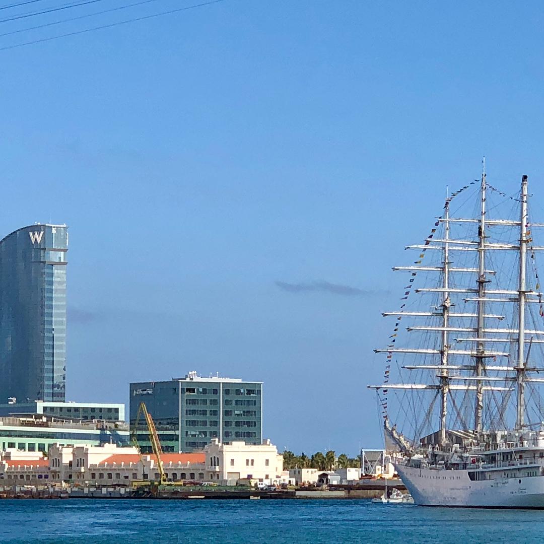 صور السفينة الشراعية الجزائرية  [ الملاح 938 ] - صفحة 11 43262749711_5747e5a170_o