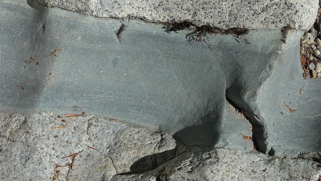Image shows speckled gray diorite cut in half by a darker gray-green, smooth-grained rock.