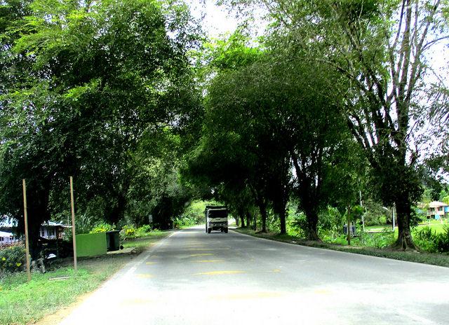 Batu 36 Sibu-Bintulu