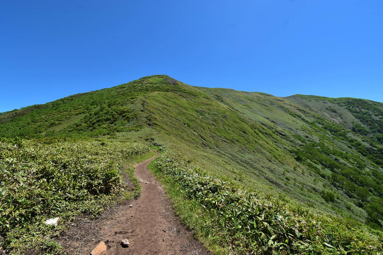 松手山から平標山までの登山道