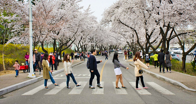 SEOUL – TP.HCM