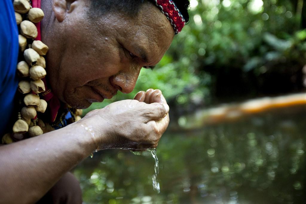 Caroline Bennett / Rainforest Action Network