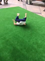 恵比寿ガーデンプレイスの芝生広場 2018