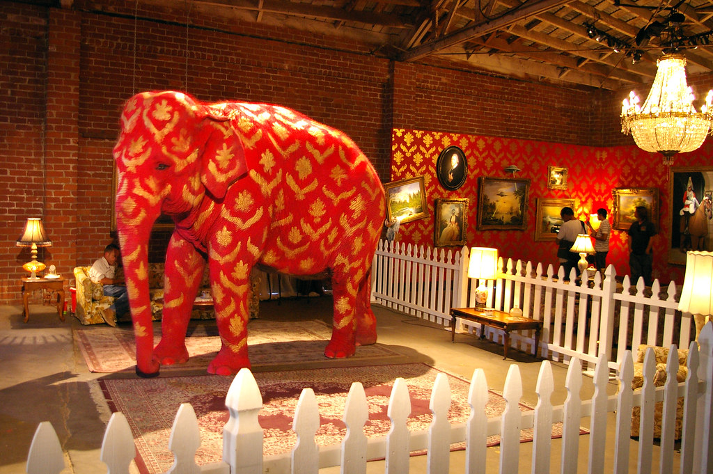 Free Images Elephant In The Room
