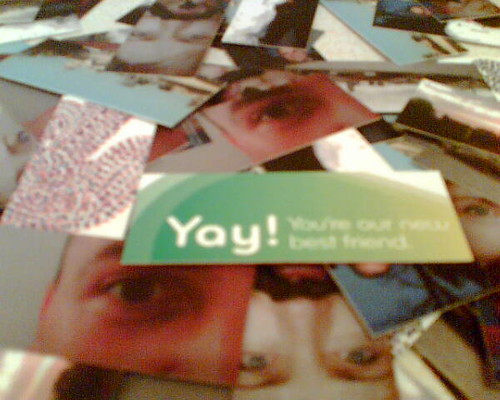 Yay - Moo Cards! | by Lloyd Davis