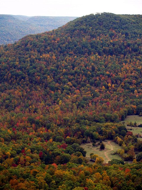 The Ozarks Showing Off Their Fall Colors