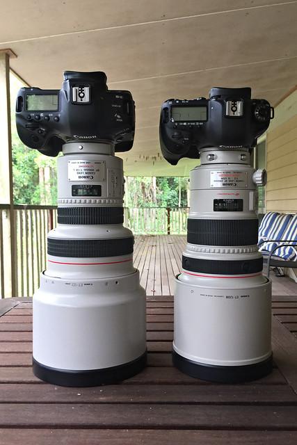 Canon EF 200mm Prime Lenses Side-by-Side