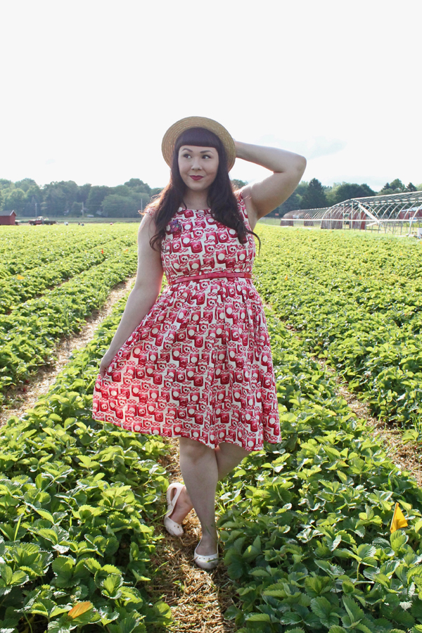 strawberry dress joanie clothing