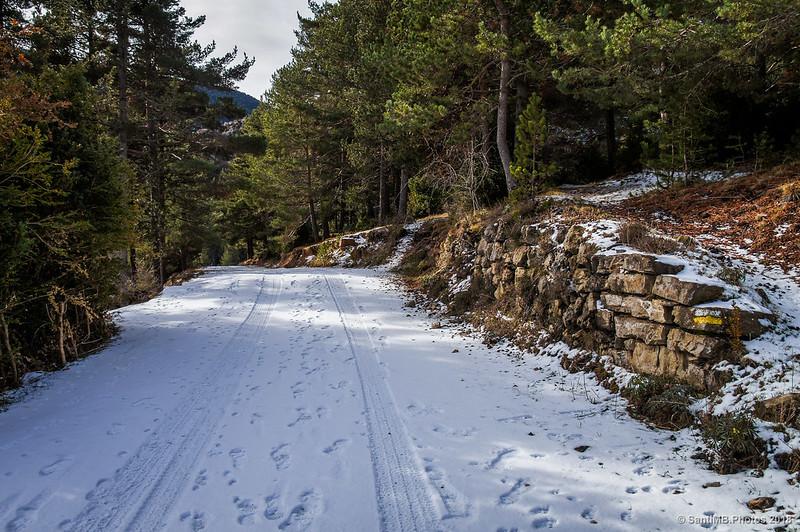 De camino a Peguera por los Plans del Grau