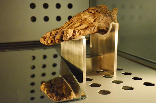 Mumified Guanche foot, Museum of Man and Nature, Santa Cruz, Tenerife