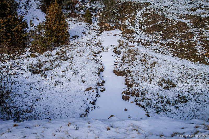 Torrent del Coix cubierto de nieve